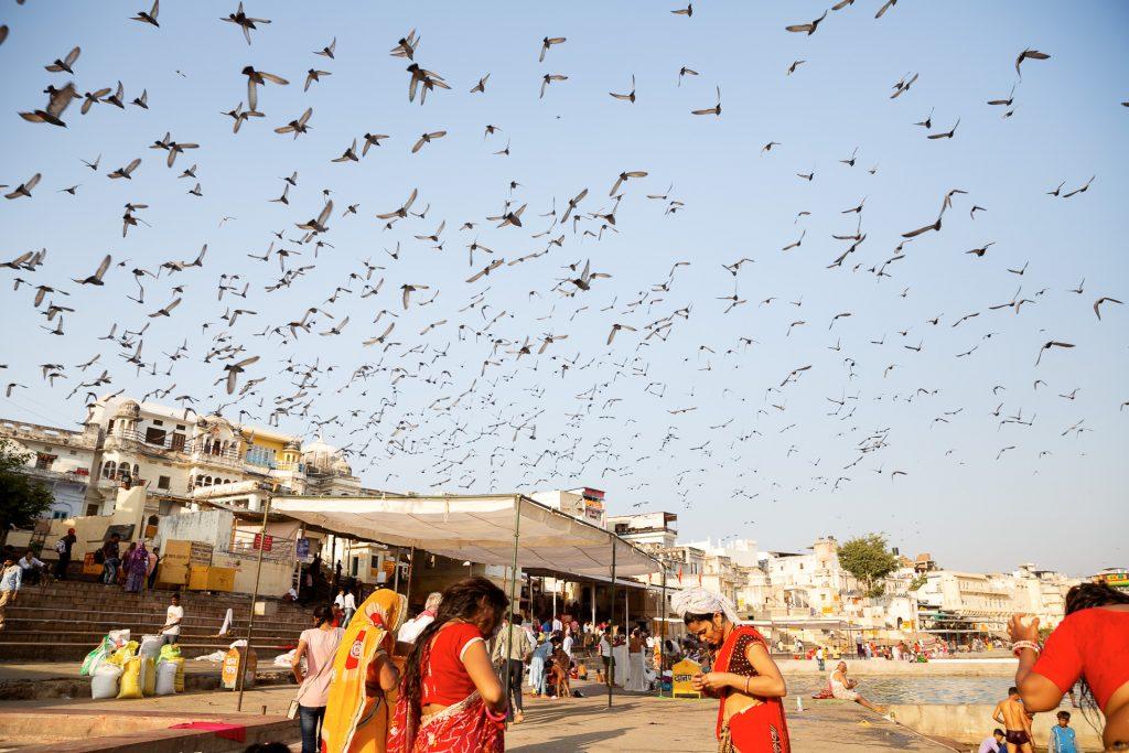 In der heiligen Stadt Pushkar besichtigen wir die Altstadt mit ihren unzähligen Tempeln und den gleichnamigen See.