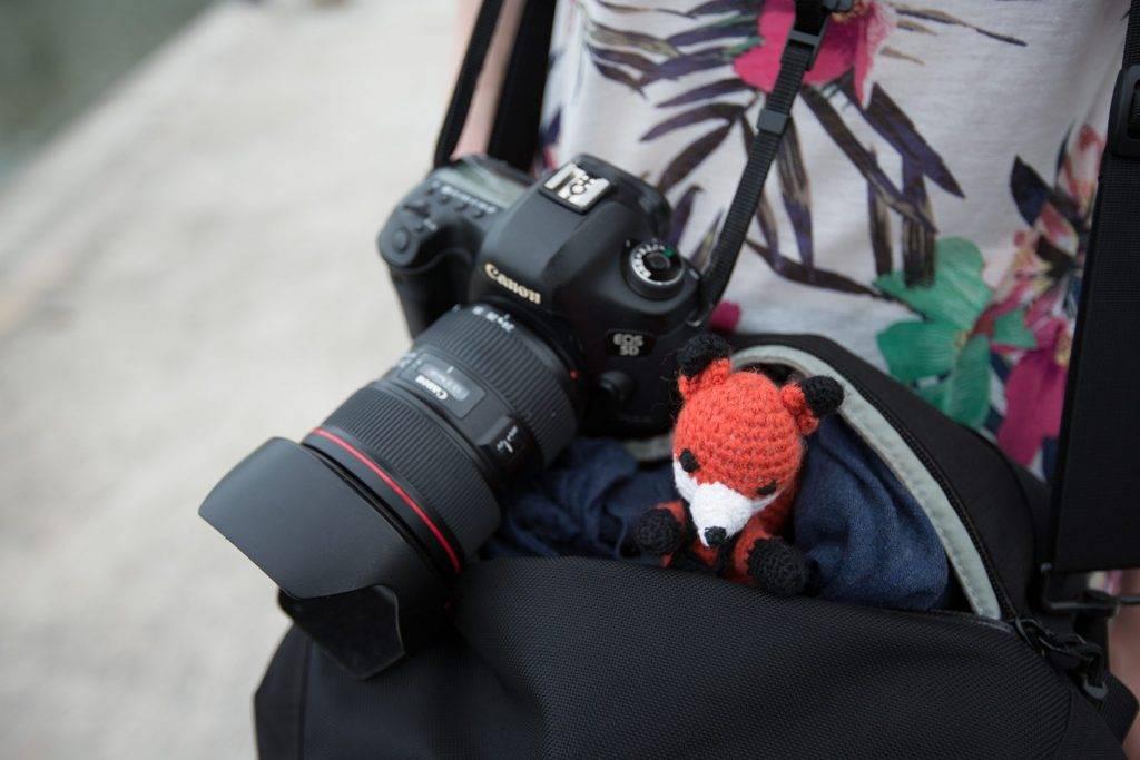 Finn der Fotofuchs hat eine starke Reisepartnerin gefunden, die ihn samt Kameratasche trägt - Die Fotofüchse - Auf Reisen fotografieren lernen