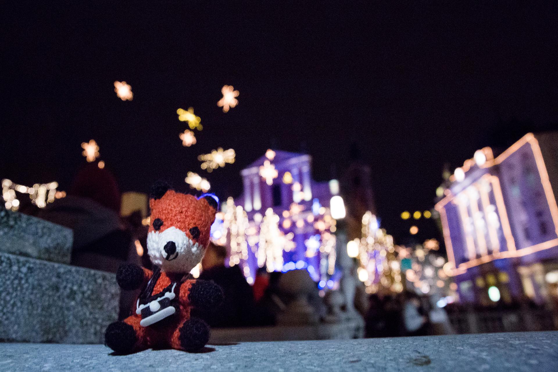 Finn vor weihnachtlichem Bokeh-Hintergrund. Beim Fotografieren im Winter kannst du die Lichter auf Weihnachtsmärkten zu deinem Vorteil nutzen.