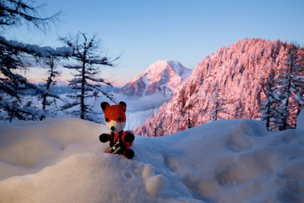 Fotografieren im Winter. Trotz der winterlichen Temperaturen draußen fotografieren. Finn der Fotofuchs macht es vor.