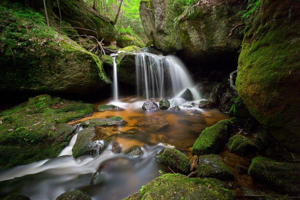 Die Große Ysper bietet mit ihren vielfältigen Wasserläufen ein besonderes Naturschauspiel für Langzeitbelichtungen.