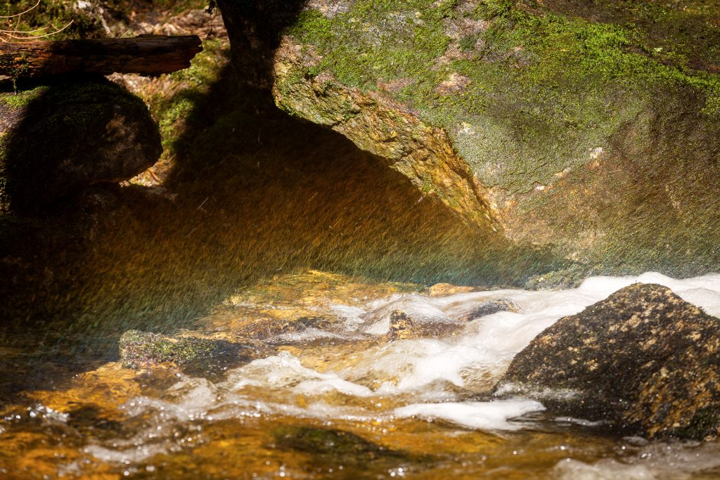 Auch wenn wir wieder kein Gold am Ende des Regenbogens gefunden haben. Wir zeigen dir, wir du Lichtspiele in der Naturfotografie einfangen kannst.