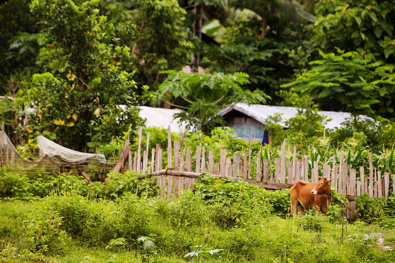 Die Fotofüchse - Auf Reisen fotografieren lernen, Fotokurs Fotoreise Myanmar Wien Österreich