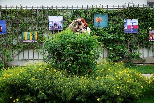 Fotografie Inspirationen. Fotokurs Teilnehmerin fotografiert hinter einem großen grünen Busch und verwendet diesen als Vordergrund für ihr Foto.