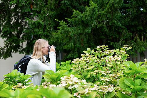Fotografie Inspirationen. Eine Fotokurs Teilnehmerin steht zwischen grünen Büschen und fotografiert