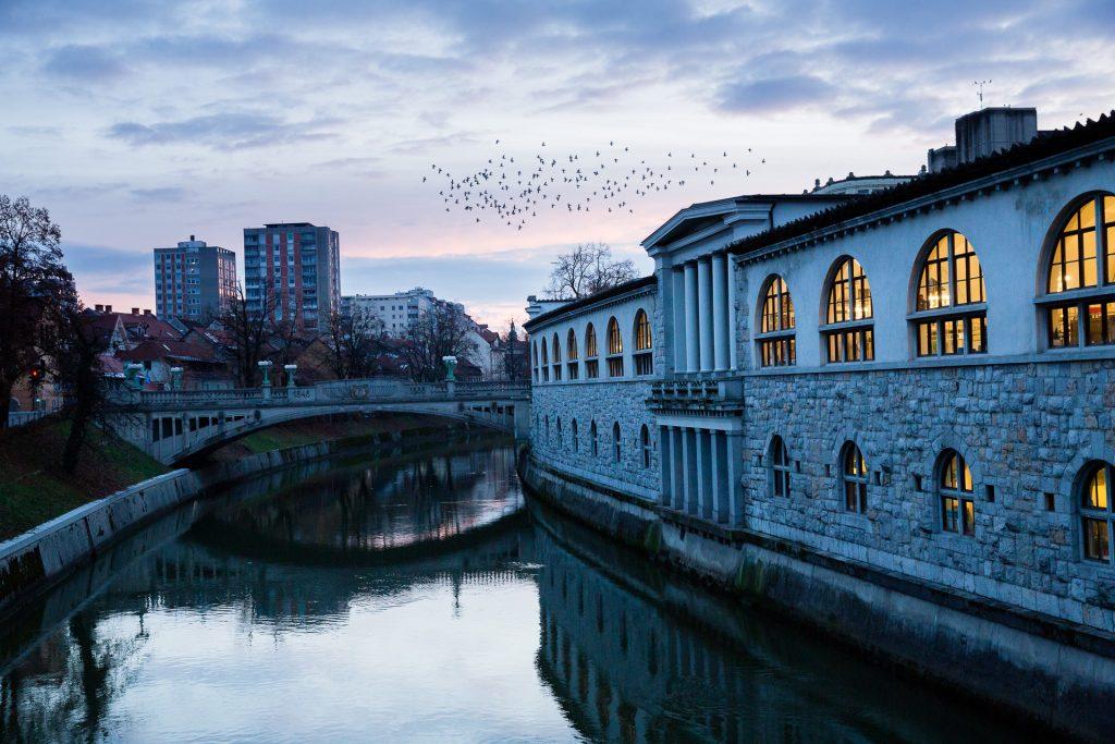 Im besonderen Morgenlicht des Winters kältefest fotografieren.