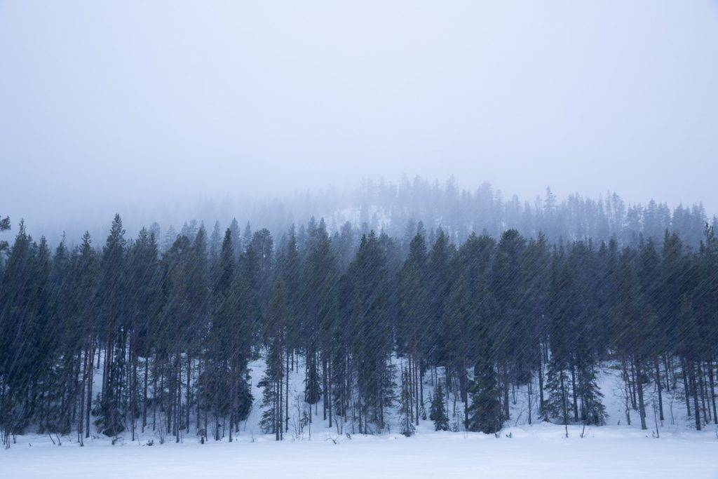 Es gibt kein schlechtes Wetter. Wenn du Lust hast, gehen wir mit dir auch bei schwierigen Bedingungen auf Fotostreifzug.