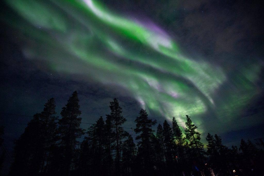 Wenn alle Fotofüchse brav aufessen, sehen wir auch Polarlichter.