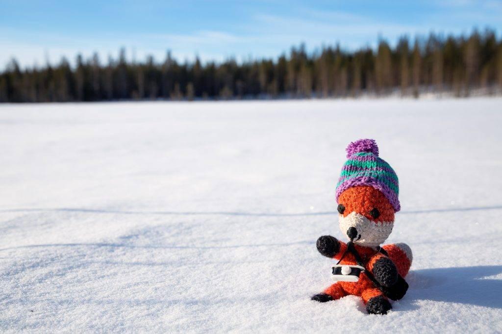 Finn zeigt dir viele Tipps und Tricks um dich, deine Kamera und dein Equipment winterfest zu machen.