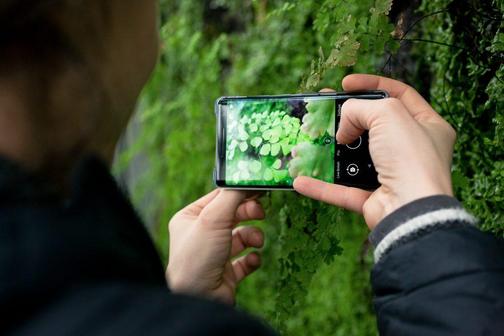 Bei unserem Fotokurs in Schönbrunn kannst du auch mit deiner Handy-Kamera teilnehmen.