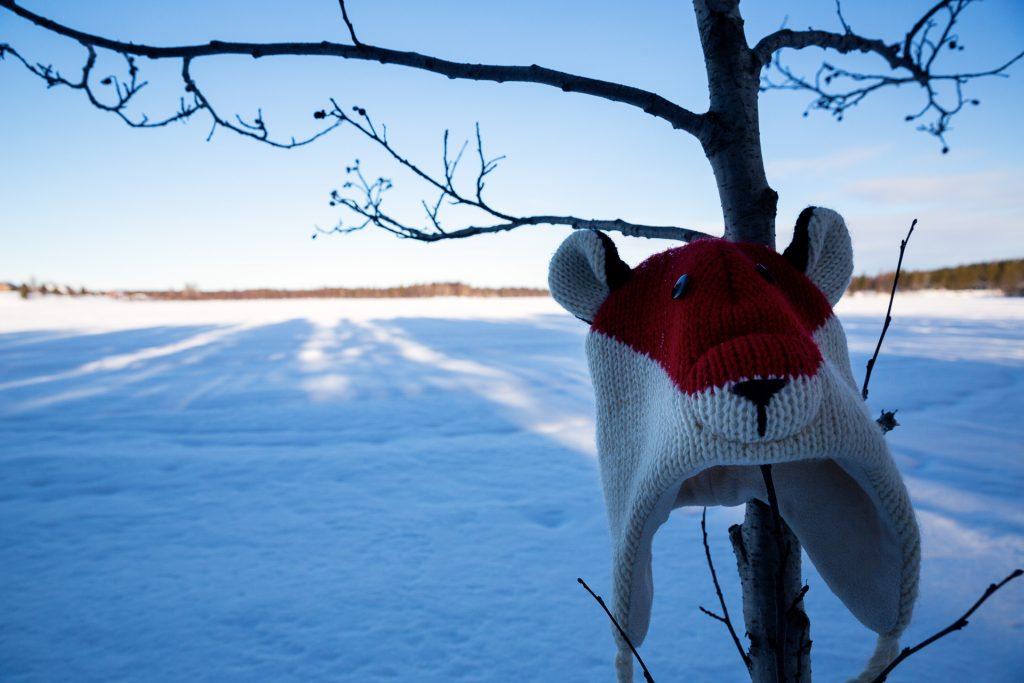 Schenke deiner Kamera eine Mütze oder einen Schal, wenn du im Winter draußen auf Fotostreifzug unterwegs bist.