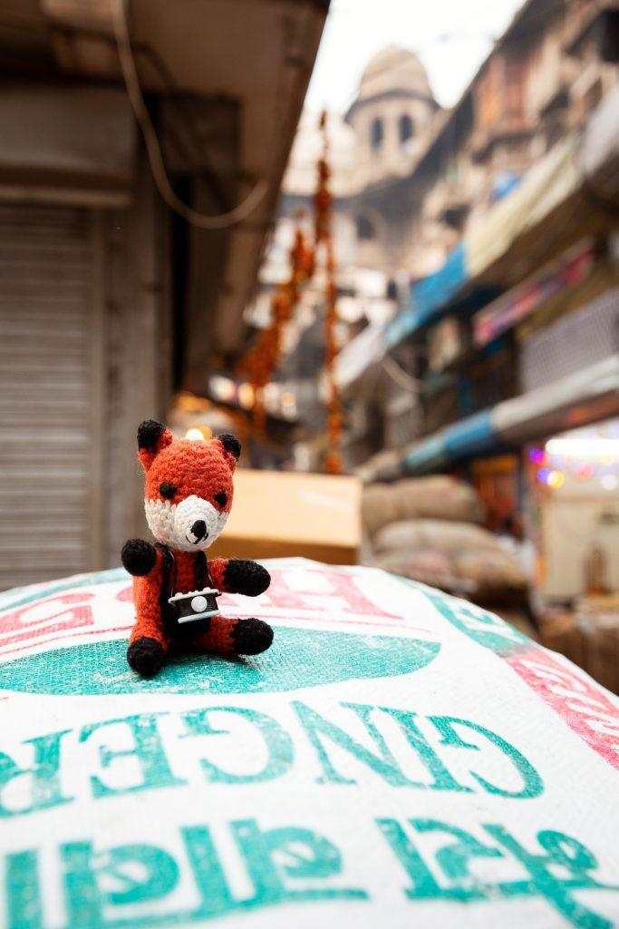Finn im Einkaufsrausch am Gewürzmarkt. Ingwer passt zu fast jedem indischen Gericht.