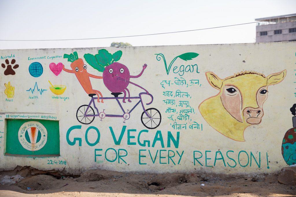 In Indien sind die meisten Speisen vegetarisch oder vegan.