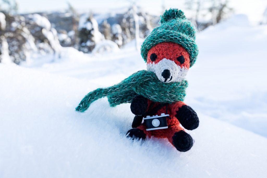 Die FOTOFÜCHSE Wunschorte. Fotofuchs Finn ist schon bestens für das spezielle isländische Wetter vorbereitet.