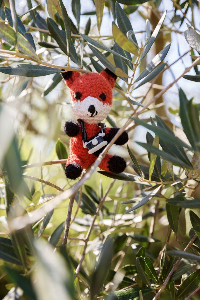 Die FOTOFÜCHSE Wunschorte. Nach diesen Anstrengungen gönnt auch Finn sich eine Pause in den schattigen Olivenhainen an der kroatischen Küste.