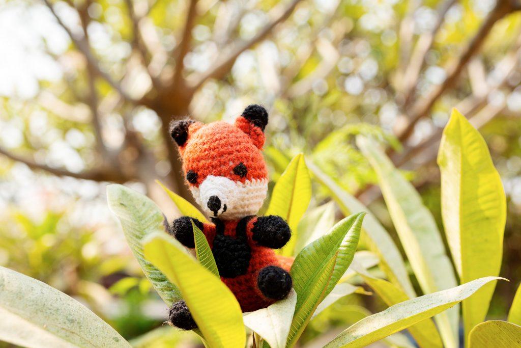 Die FOTOFÜCHSE Wunschorte. Für einen ausgefuchsten Vordergrund klettert Finn auch gerne in der Natur herum.