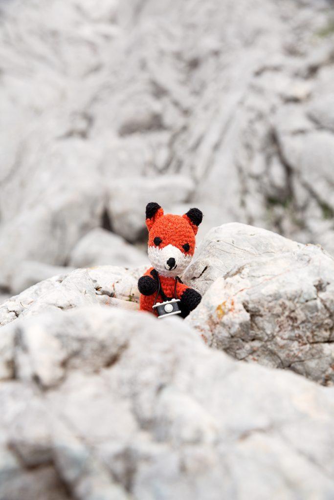 DIE FOTOFÜCHSE Foto Locations Salzkammergut. Im Karstgestein des Toten Gebirges kannst du deinen Lieblingsfuchs vor einem wunderbaren, natürlichen Hintergrund portraitieren.