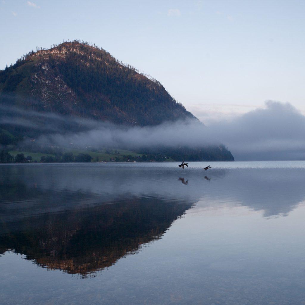 DIE FOTOFÜCHSE Foto Locations Salzkammergut. Morgenstimmung am Grundlsee. Fotografiere bereits vor deiner Schifffahrt am Ufer des Sees.