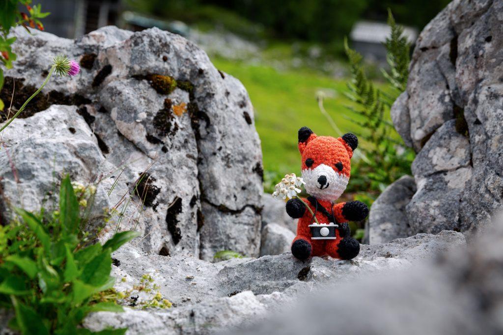 Wir stellen dir unsere 10 liebsten Foto Locations im Salzkammergut vor.