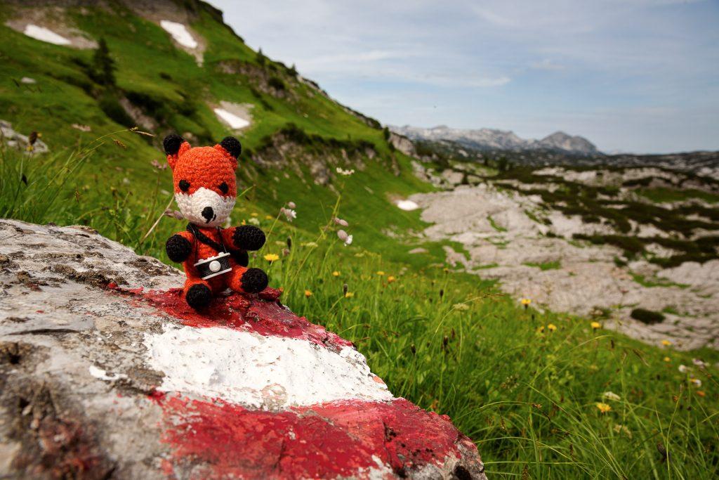 Zieh dein Superfuchskostüm an und komm mit uns auf einen herausfordernden Wander-Fotostreifzug zu vielen ausgefuchsten Fotoplätzen für Natur- und Landschaftsfotografie im Gebirge.