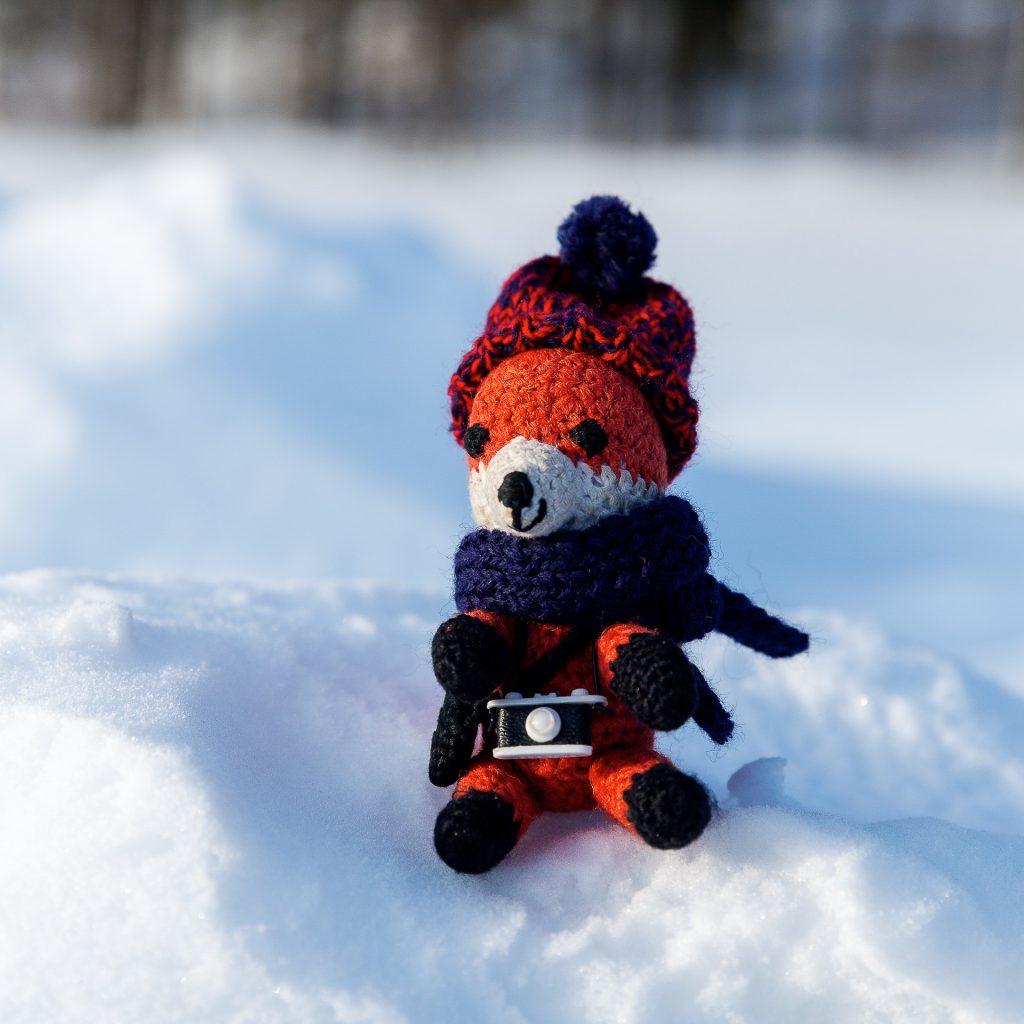 Mach dein Fotofüchse Maskottchen winterfit und hol dir dein wärmendes Winter Set.