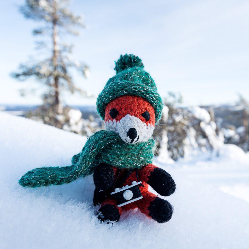 Viele trendige Farben stehen für dein Fotofüchse Maskottchen im Winter bereit.