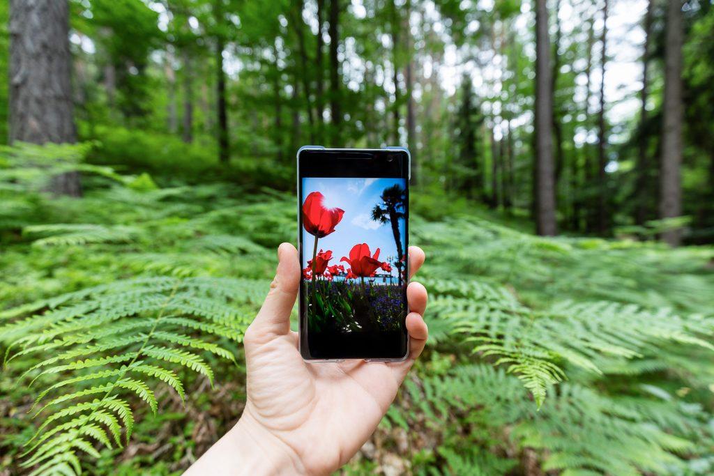 Die beste Kamera ist jene, die man dabei hat. Wir haben für dich Tipps & Tricks, wie du aus deiner Handy Kamera noch mehr herausholen kannst. Für einen ausgefuchsten Einstieg in die Handyfotografie.