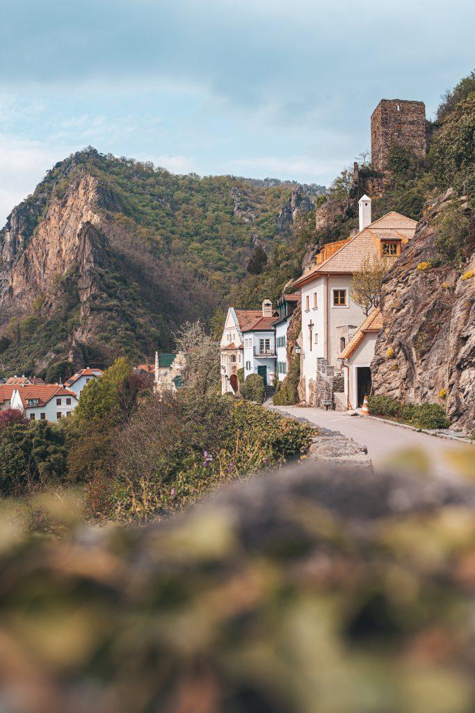 Die kleine Stadt Dürnsteins steht ganz im Zeichen der Marille und hält viele besondere Motive für dich bereit.