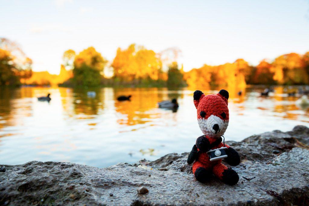 Finn zeigt dir viele Tipps und Tricks um deine Naturfotos noch spannender zu gestalten.